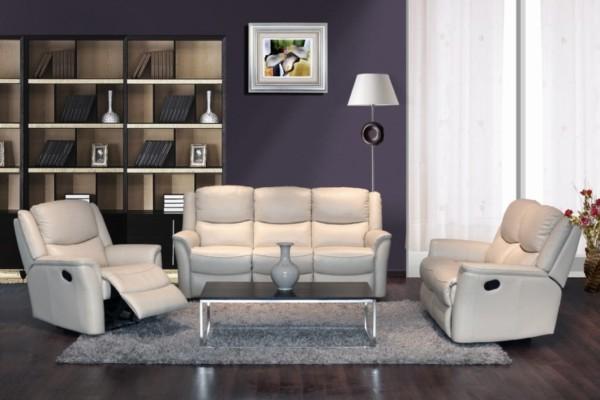 Recliner Sofas C71